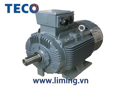 Motor TECO AESV 4P 1HP