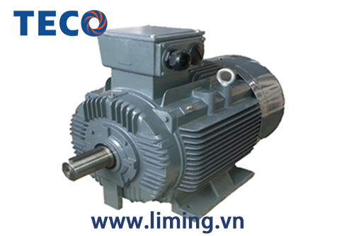 Motor TECO AESV 4P 5.5HP